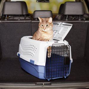 Caisse de transport pour chat 2 portes dont 1 sur le dessus 58 cm