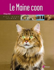 Le Maine Coon - Philippe Noël