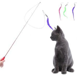 Canne à pêche télescopique pour chat