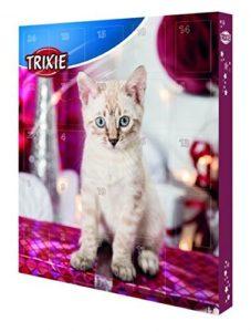 10 idées de cadeaux de Noël pour votre chat   Chat Maine Coon