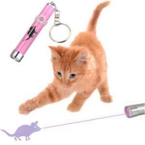 Laser lumineux pour chat - Jouet pour chat