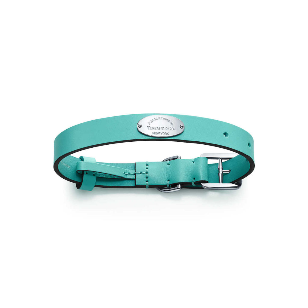 Collier turquoise pour chat Tiffany and Co