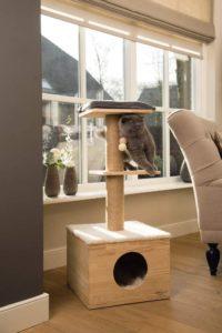 Arbre à chat en bois naturel Kamina
